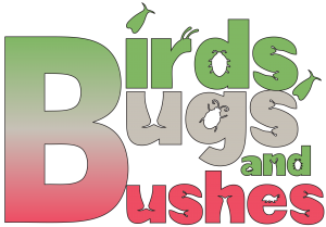 Birds, Bugs and Bushes 1