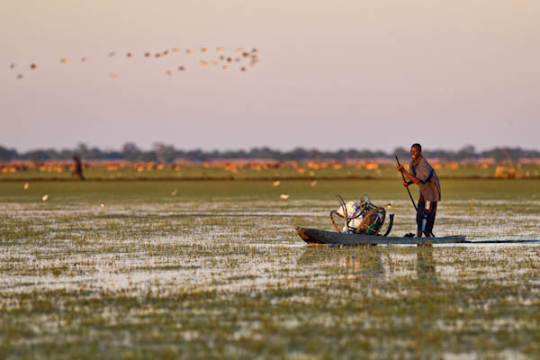 A local on a mokoro (boat)